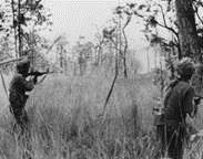 Benefiting Vietnam Veterans